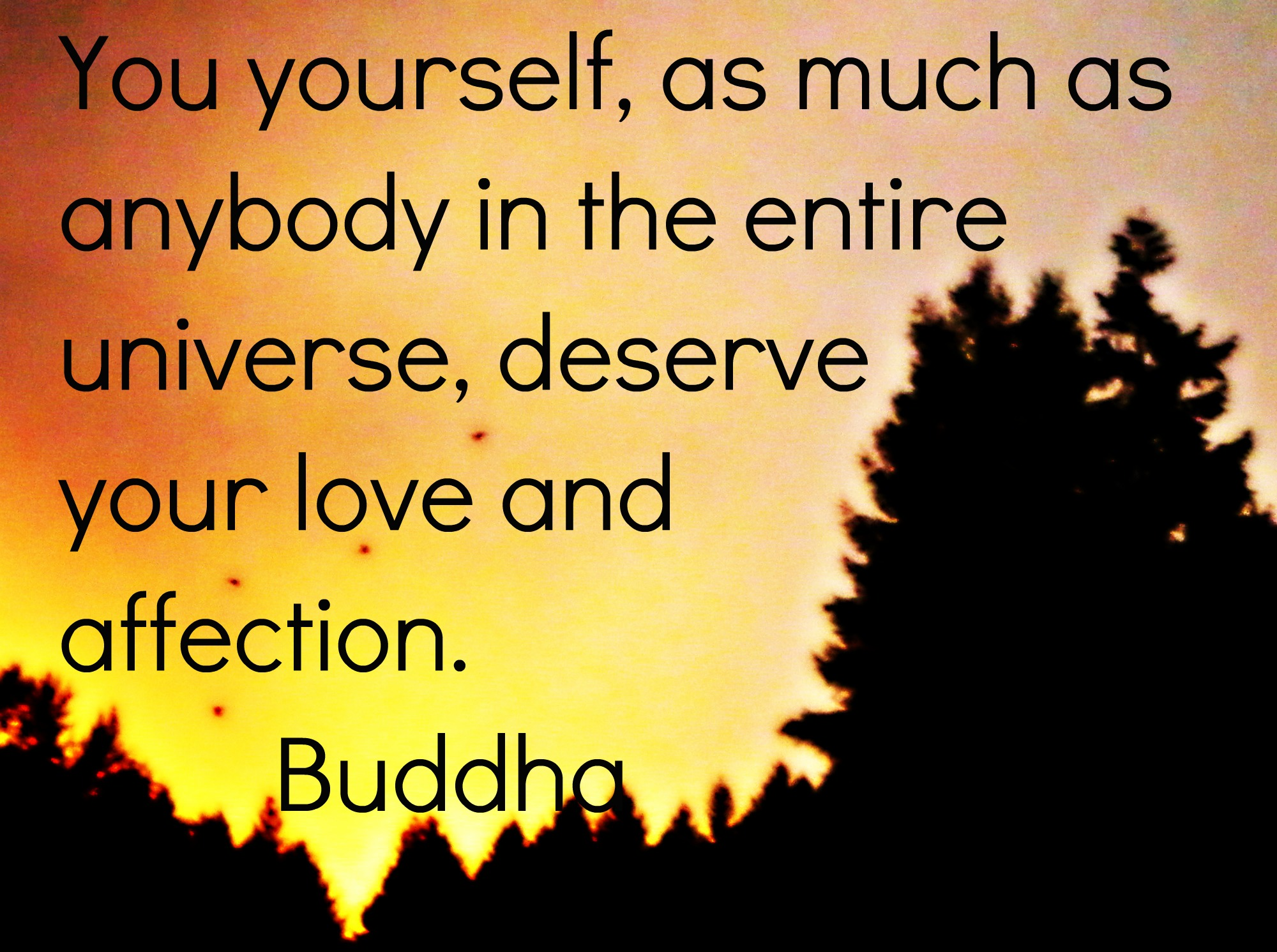 Buddhist Quotes On Love Buddha Quotes On Love And Happiness Buddha Quotes On Happiness