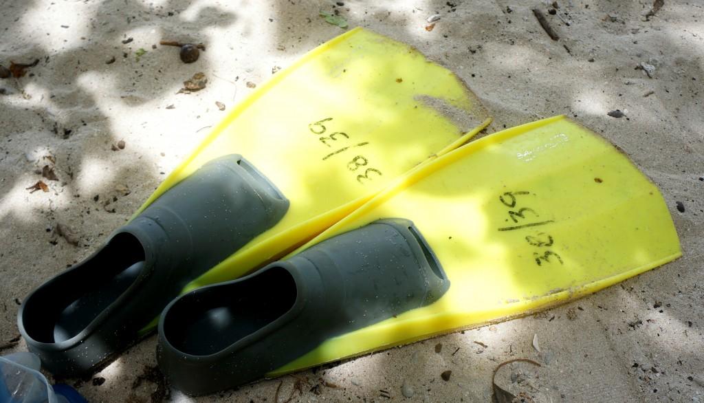mijn flippers