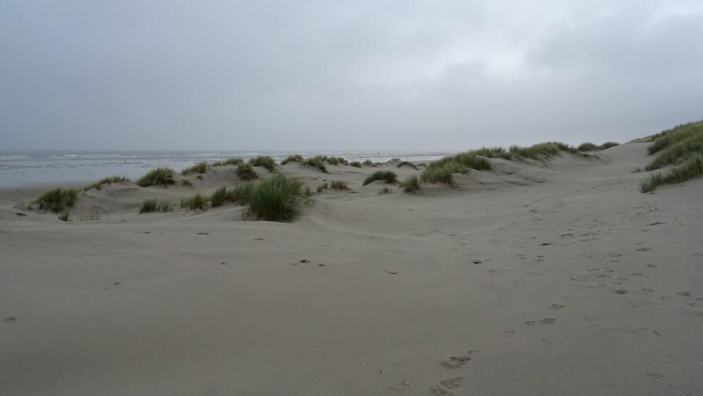 zachte duinen